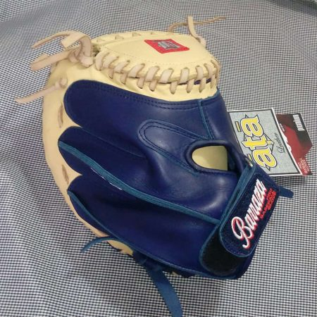 Softball Catcher's Mitt